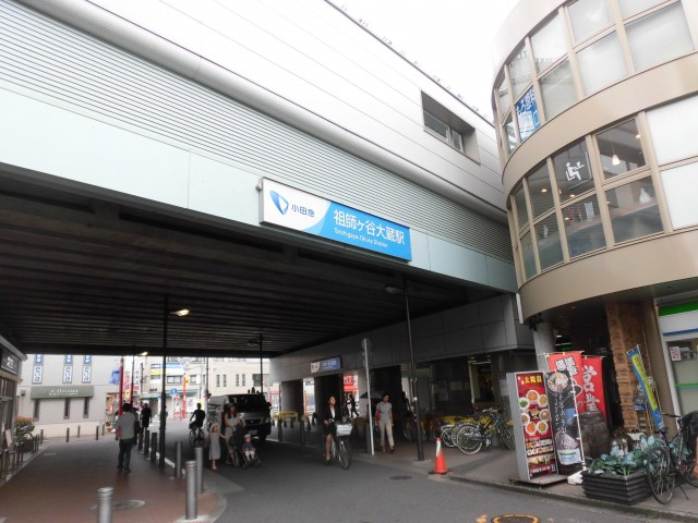 祖師ヶ谷大蔵駅(周辺)