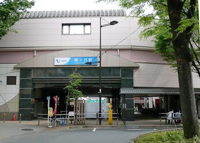 梅ヶ丘駅(周辺)