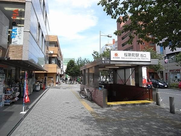 桜新町(周辺)