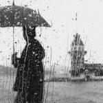 早くも梅雨の季節なのでしょうか。。。 BY学芸大学本店